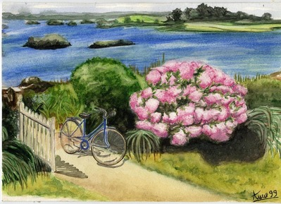 bicyclette rhododendrons