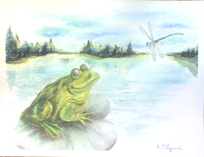 aquarelle grenouille lebellule étang