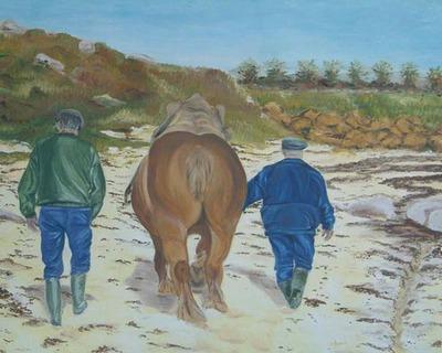 cheval_de_trait plage bretagne