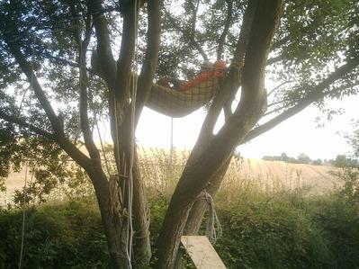 hamac en haut d'un arbre
